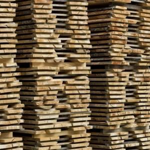 wood-blog-image